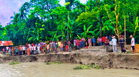 সন্ধ্যা নদীর ভাঙ্গনে দিশেহারা এলাকাবাসী